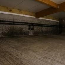 plísně na betonu, dřevu, izolačním panelu