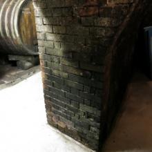 stěny s plísní